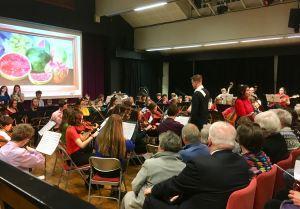 Art concert orchestra